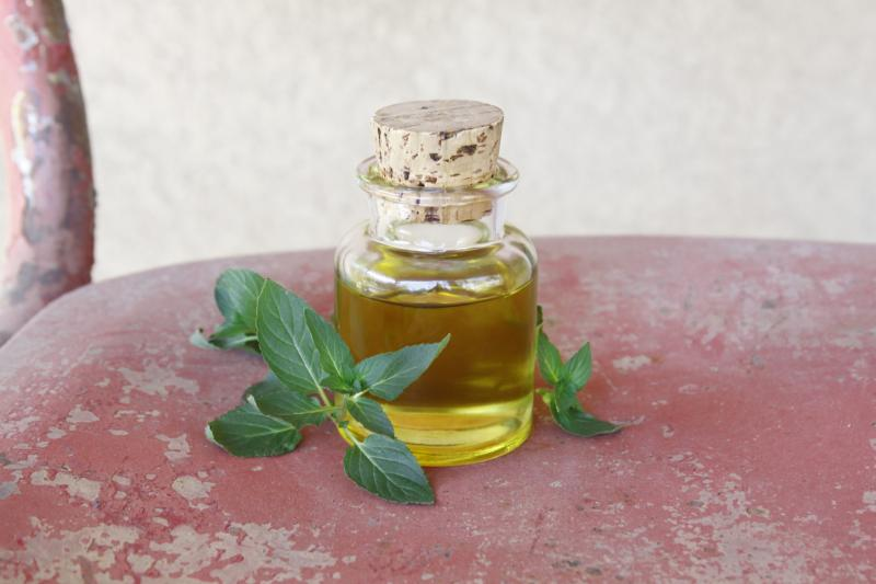 Секреты приготовления крема для лица дома